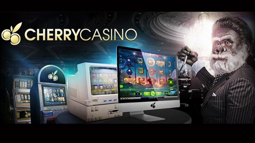 online casino reviews nz